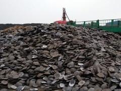 3月29日铁矿:天津港现货报价小涨